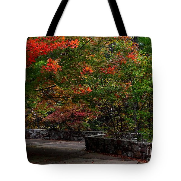 Early Fall At Talimena Park Tote Bag by Robert Frederick