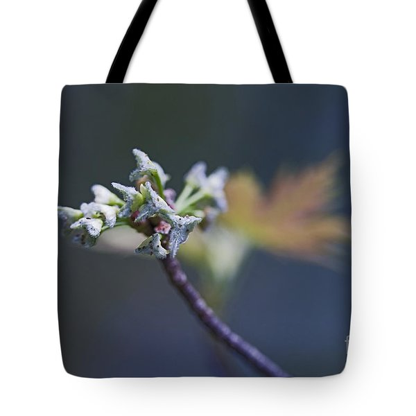 Early Morning Kiss Tote Bag by Maria Ismanah Schulze-Vorberg