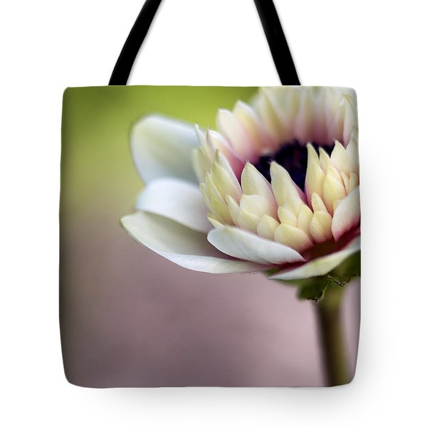 Early Spring  Tote Bag by Caitlyn  Grasso