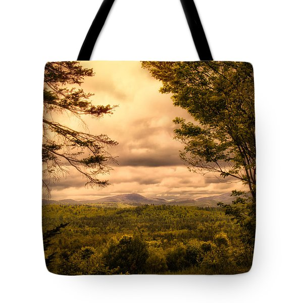 Early Spring Rain Tote Bag by Bob Orsillo