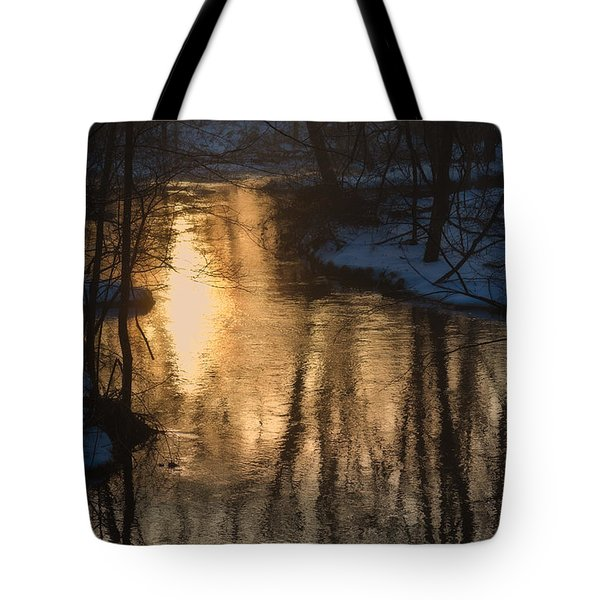 Early Winter Morning Tote Bag by Karol Livote
