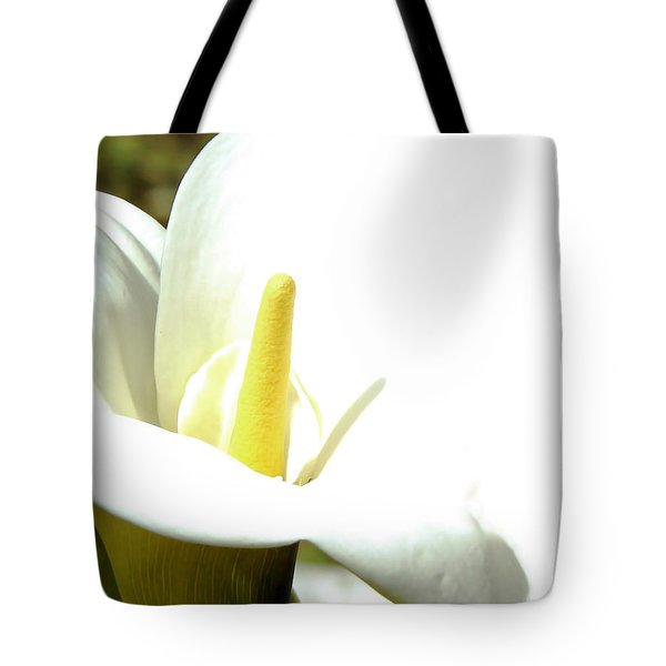 Easter Lily Tote Bag by Pamela Patch