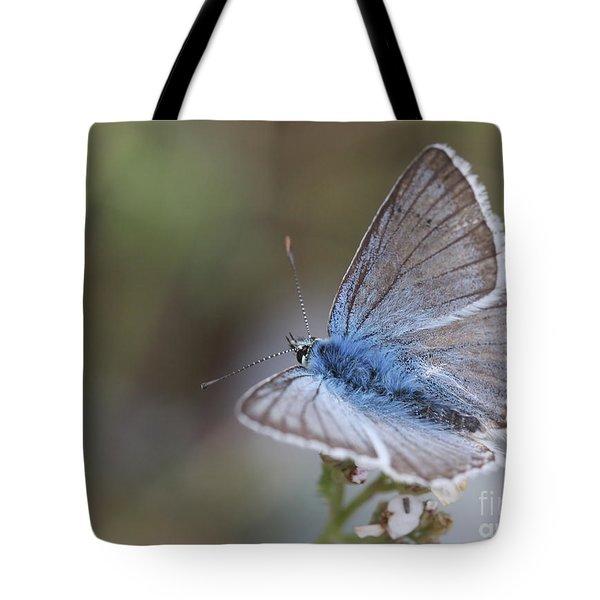 Eastern Baton Blue  Tote Bag by Amos Dor