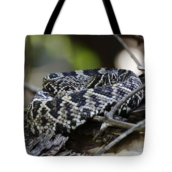 Eastern Diamondback-1 Tote Bag by Rudy Umans
