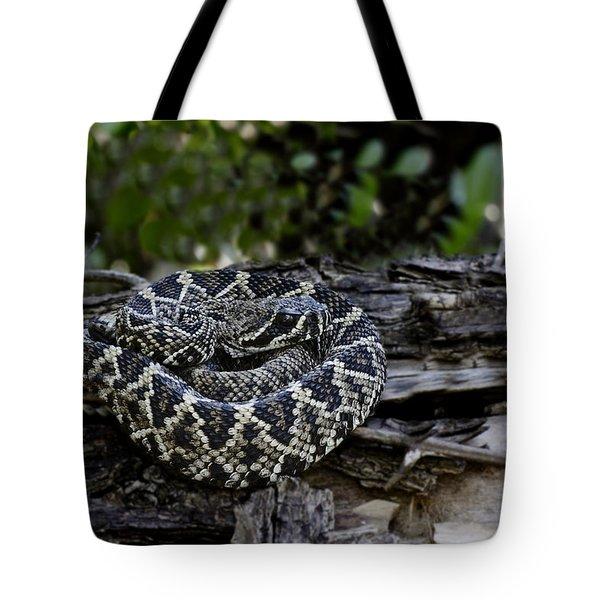 Eastern Diamondback-2 Tote Bag by Rudy Umans