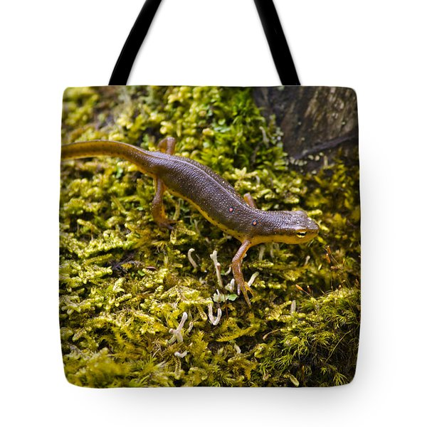 Eastern Newt Aquatic Adult Tote Bag by Christina Rollo