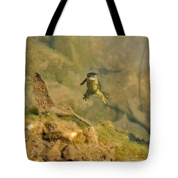 Eastern Newt In A Shallow Pool Of Water Tote Bag by Chris Flees