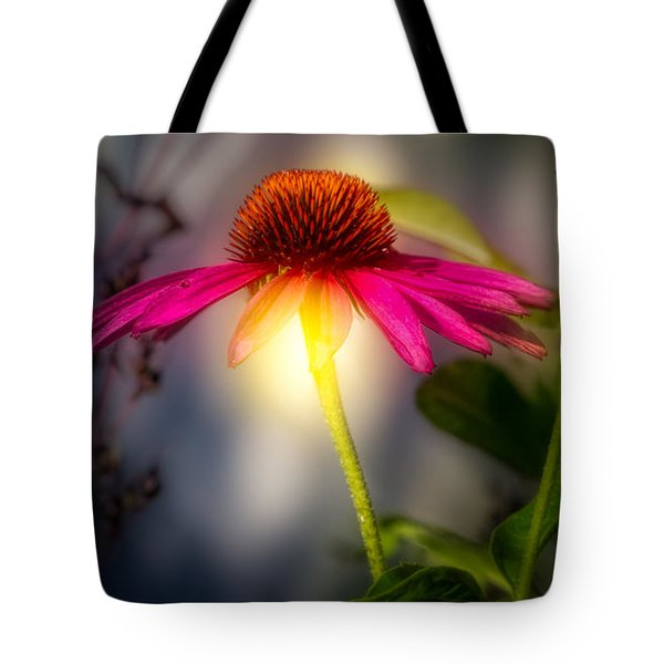 Echinacea Sunrise Tote Bag by Bob Orsillo