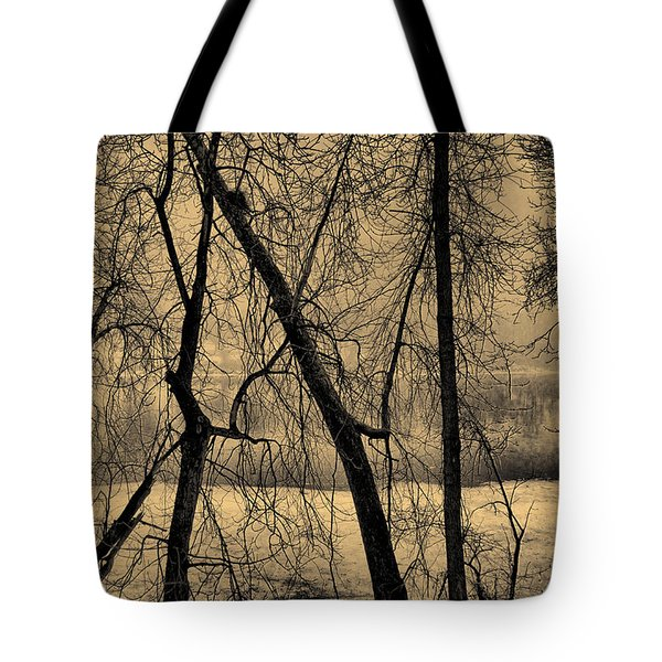 Edge of Winter Tote Bag by Bob Orsillo