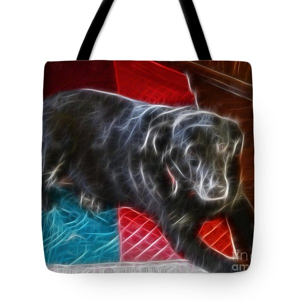 Electrostatic Dog And Blanket Tote Bag by Barbara Griffin