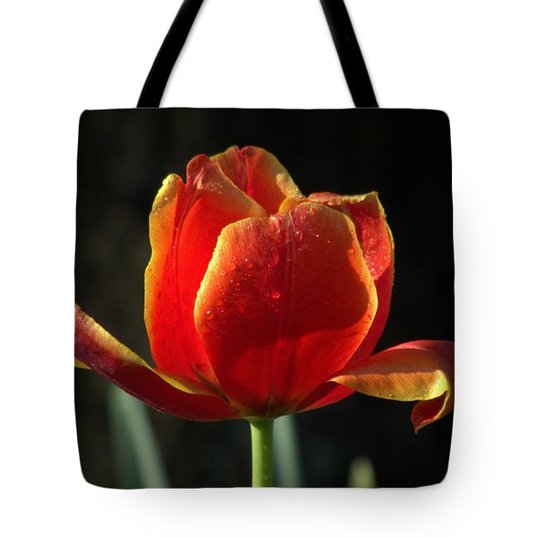 Elegance of Spring Tote Bag by KAREN WILES