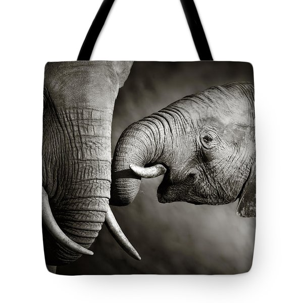 Elephant Affection Tote Bag by Johan Swanepoel