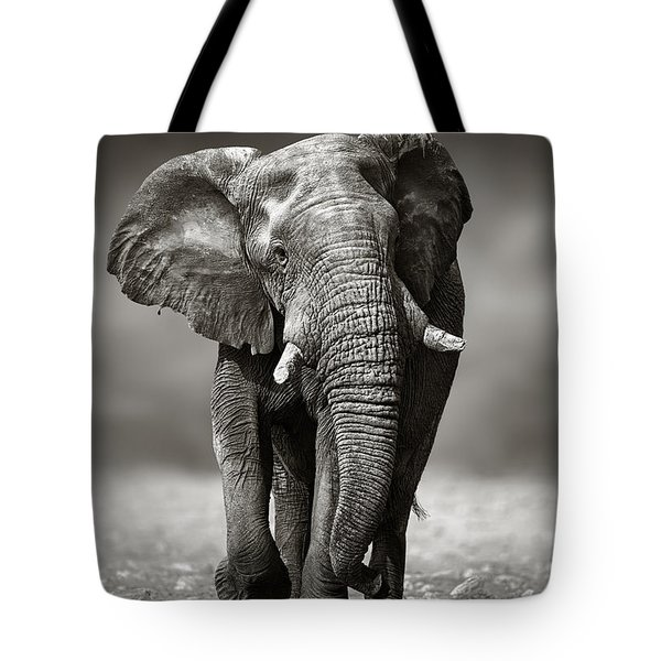 Elephant Approach From The Front Tote Bag by Johan Swanepoel