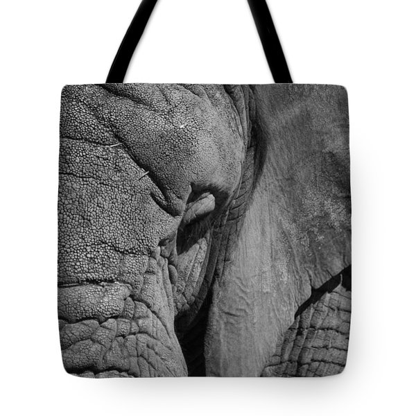 Elephant Bw Tote Bag by Ernie Echols