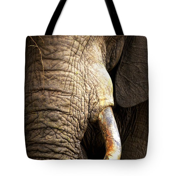 Elephant close-up portrait Tote Bag by Johan Swanepoel