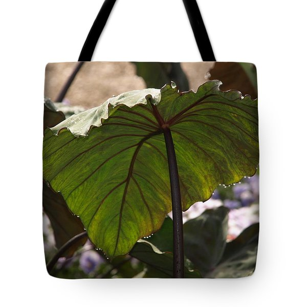 Elephant Ear Tote Bag by James Peterson