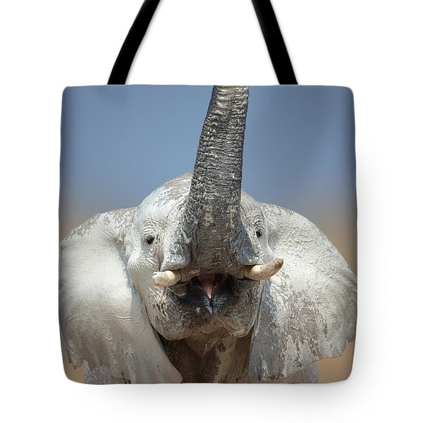 Elephant portrait Tote Bag by Johan Swanepoel
