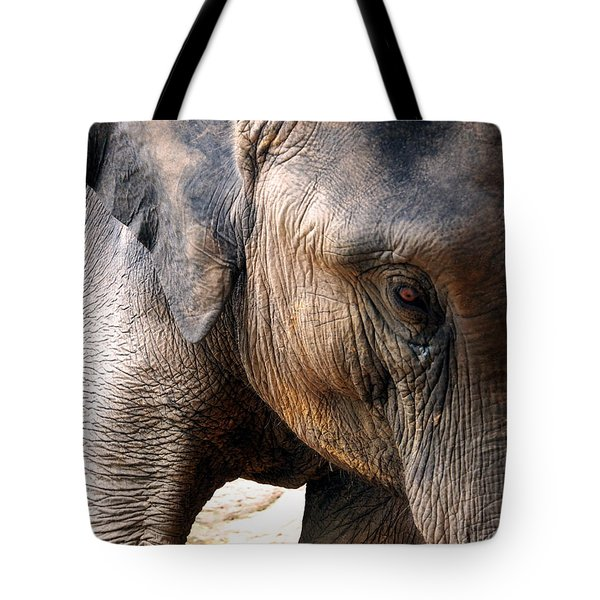 Elephant's Eye Tote Bag by Justin Woodhouse