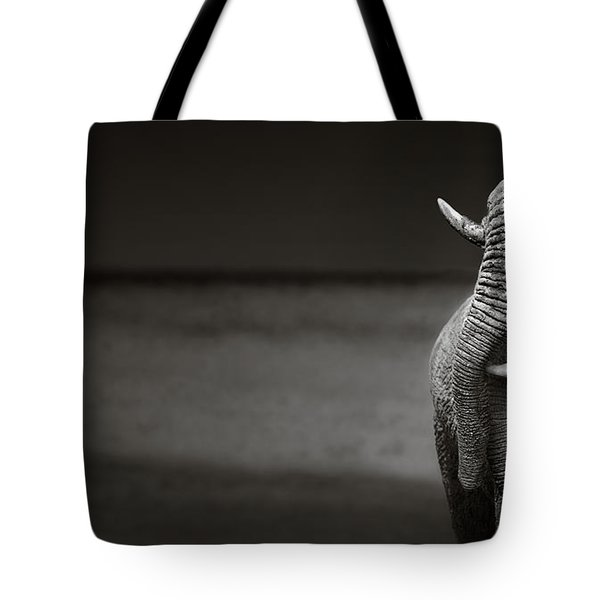 Elephants Interacting Tote Bag by Johan Swanepoel