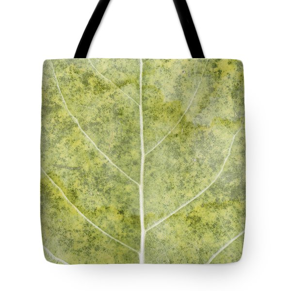 Eloquent Tote Bag by Brett Pfister