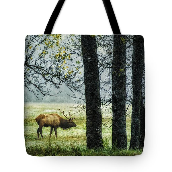 Emerging from the Fog Tote Bag by Priscilla Burgers