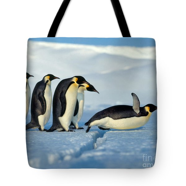 Emperor Penguin Aptenodytes Forsteri Tote Bag by Hans Reinhard