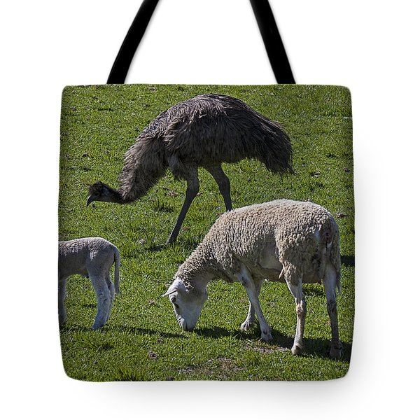 Emu And Sheep Tote Bag by Garry Gay