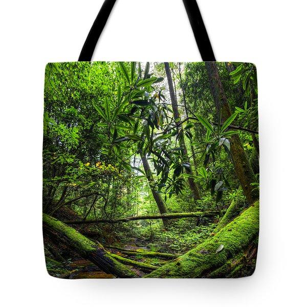 Enchanted Forest Tote Bag by Debra and Dave Vanderlaan