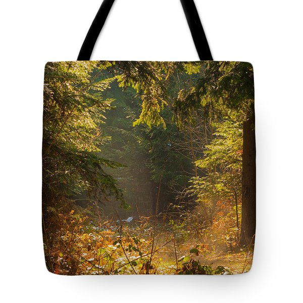 Enchanted Forest Tote Bag by Evgeni Dinev