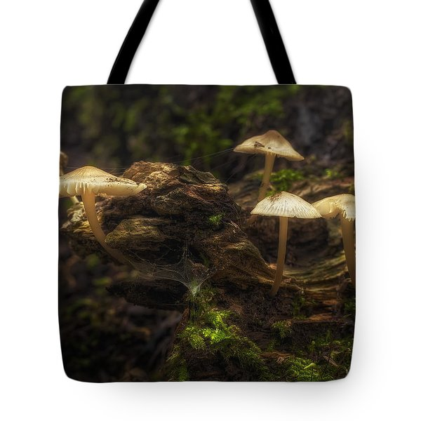 Enchanted Forest Tote Bag by Scott Norris