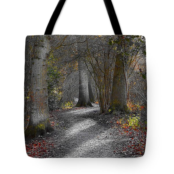 Enchanted Woods Tote Bag by Linsey Williams