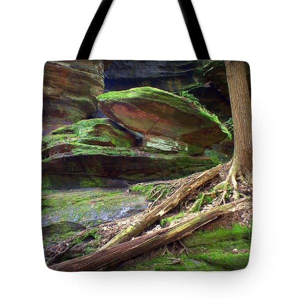 Enchanting Tote Bag by J Allen