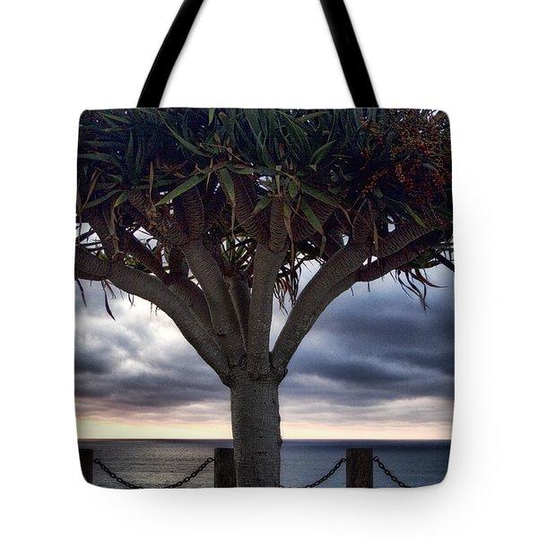 Encinitas Sunset Tote Bag by Carol Leigh