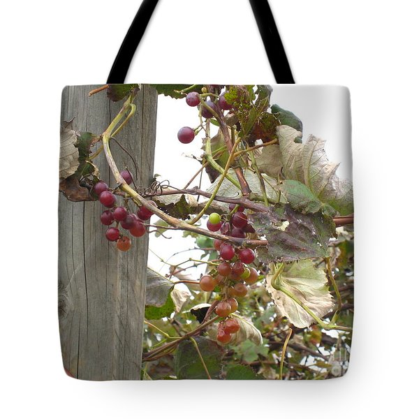 End Of Season Grapes Tote Bag by Jennifer Doll