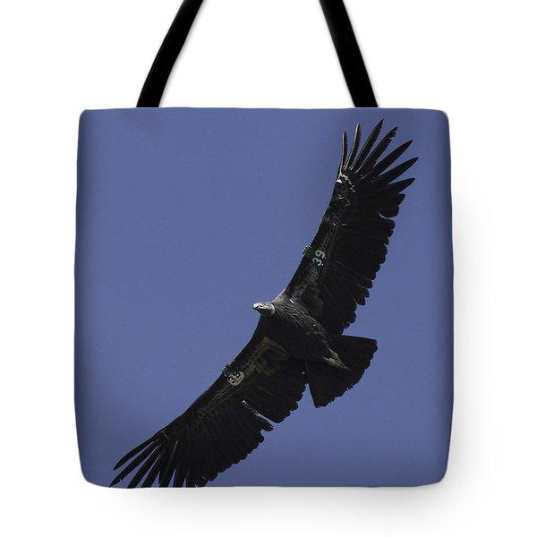Endangered California Condor Tote Bag by Ram Vasudev