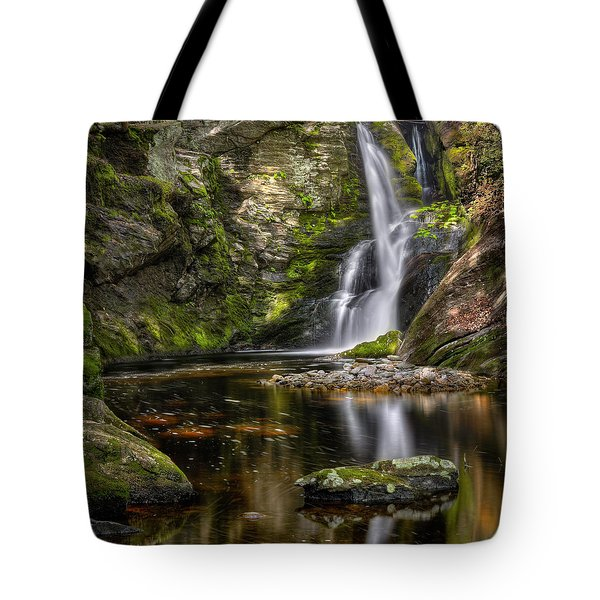Enders Falls Tote Bag by Bill Wakeley