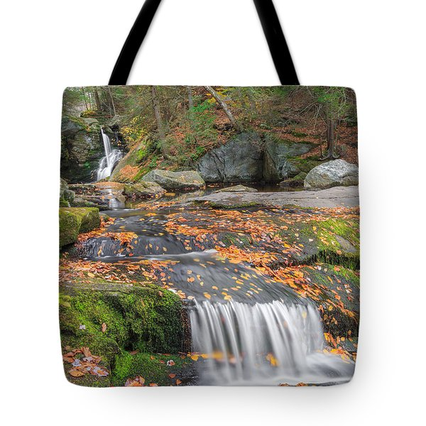 Enders Portrait Tote Bag by Bill  Wakeley
