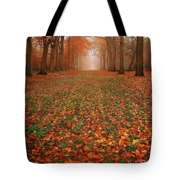 Endless Autumn Tote Bag by Photodream Art