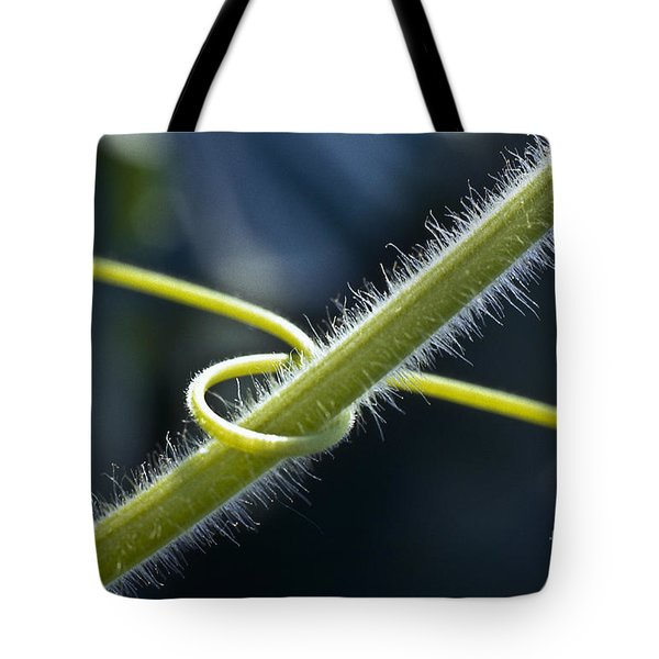 Entwined Tote Bag by Heiko Koehrer-Wagner