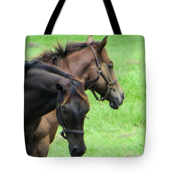 Equine Beauties Tote Bag by Dorothy Menera