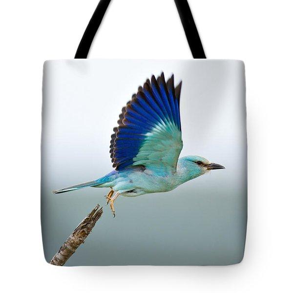 Eurasian Roller Tote Bag by Johan Swanepoel