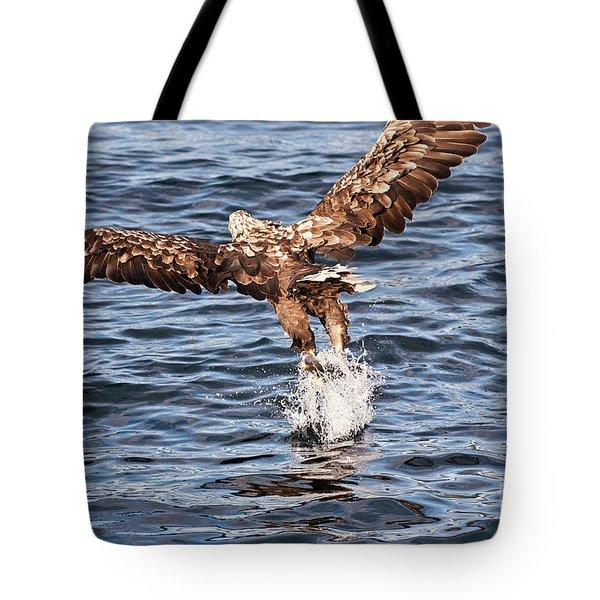 European Fishing Sea Eagle 2 Tote Bag by Heiko Koehrer-Wagner