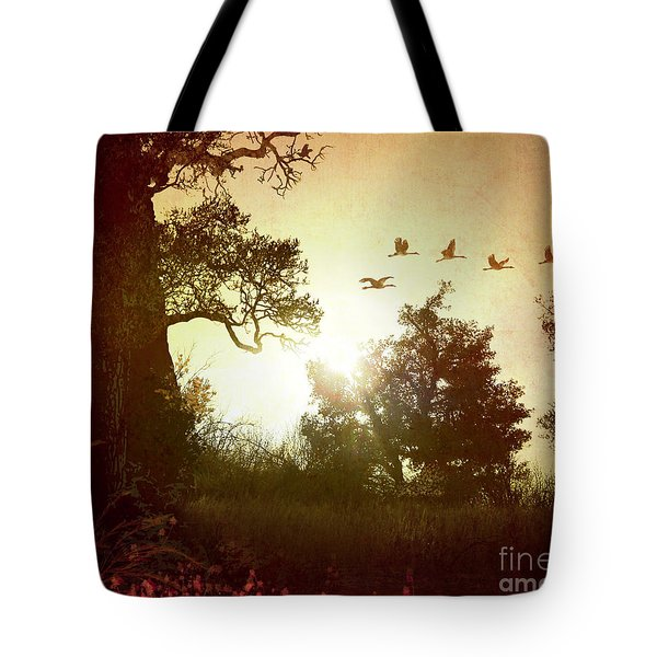 Evening Flying Geese Tote Bag by Bedros Awak