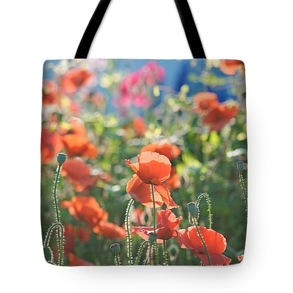 Evening Lights The Poppies Tote Bag by Lisa Knechtel