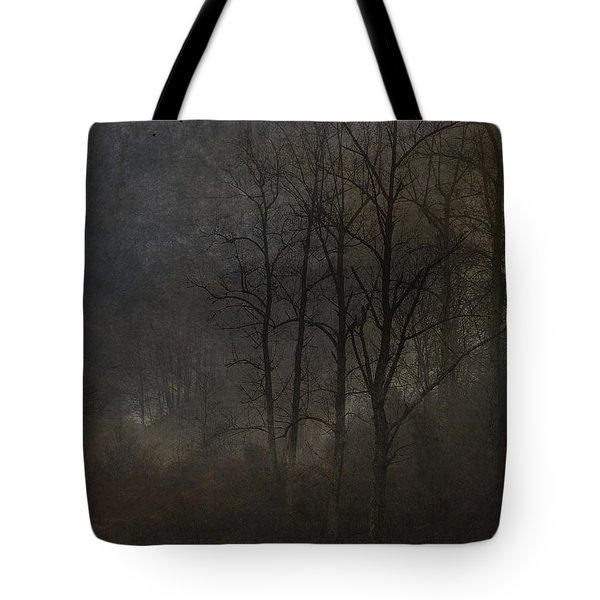 Evening Mist Tote Bag by Ron Jones