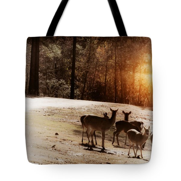 Evening Social Tote Bag by Kim Henderson