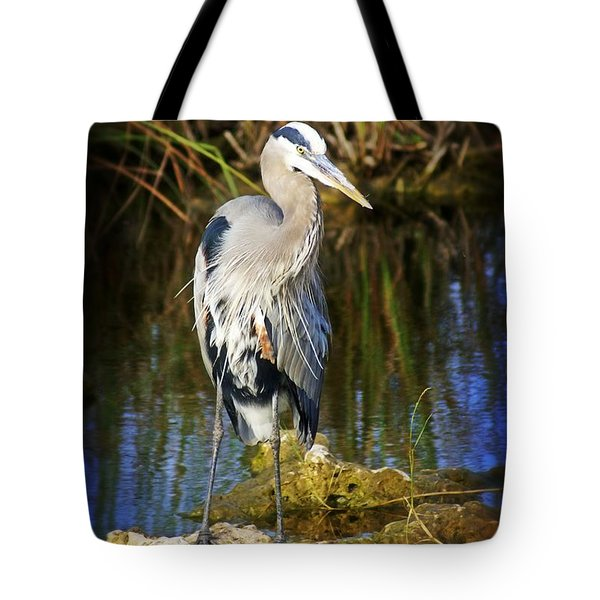 Everglades Blue Tote Bag by Marty Koch