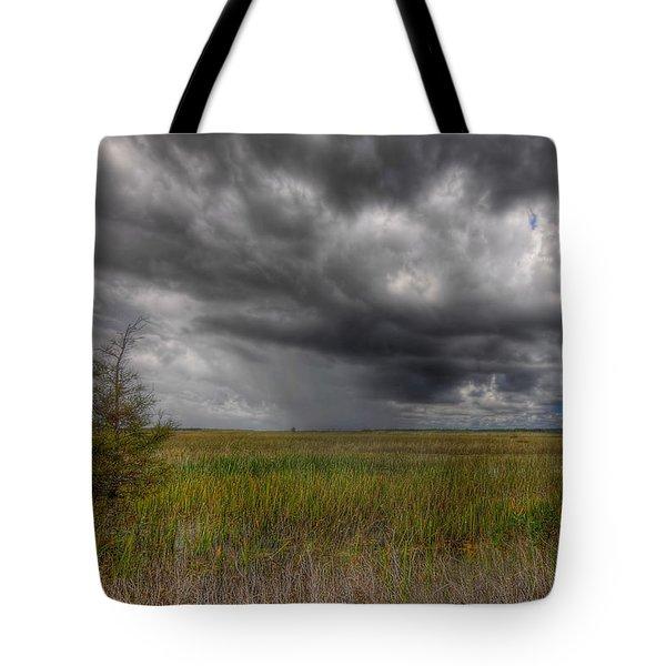 Everglades Storm Tote Bag by Rudy Umans