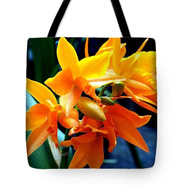 EXOTIC ORANGE Tote Bag by KAREN WILES