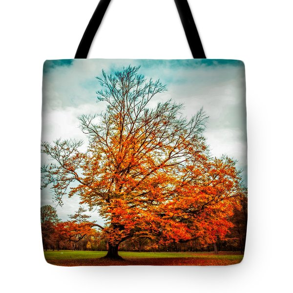 expecting the winter II Tote Bag by Hannes Cmarits